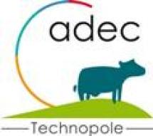 Catherine LEDIG - ADEC (Association pour le D�veloppement des Entreprises et des Comp�tences)