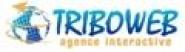 Jérôme CHATILLON - TRIBO WEB