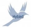Jean-Michel ARMAND - HYBIRD