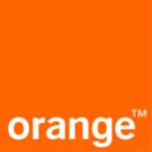 Laurent VITOUX - Orange