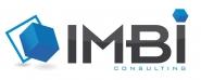 Naoufal  AINANE - IMBI Consulting