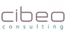Patrick CONVERTY - CIBEO Consulting