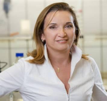 Corinne VERSINI - Genesink