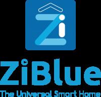 Laurent  PEREZ - ZiBlue