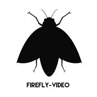 Pierre  HECQUET  - FIREFLY VIDEO