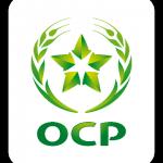 Direction Exécutive Affaires Publiques et Communication Groupe - OCP SA