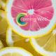 Henriette ROUSSEL - Coming-Web